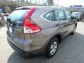 2014 Urban Titanium Metallic Honda CR-V LX AWD  photo #6