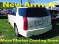 White Diamond 2005 Cadillac SRX V8