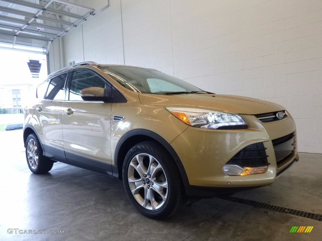 2014 Escape Titanium 2.0L EcoBoost 4WD - Karat Gold / Charcoal Black photo #1