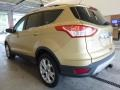 2014 Karat Gold Ford Escape Titanium 2.0L EcoBoost 4WD  photo #4