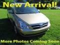 Sonora Gold 2007 Hyundai Entourage GLS