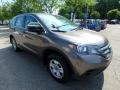 2014 Urban Titanium Metallic Honda CR-V LX AWD  photo #8