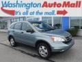 2010 Opal Sage Metallic Honda CR-V LX AWD  photo #1