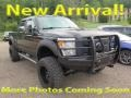 2014 Tuxedo Black Metallic Ford F250 Super Duty XL Crew Cab 4x4 #122212369