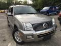Silver Birch Metallic 2008 Mercury Mountaineer AWD