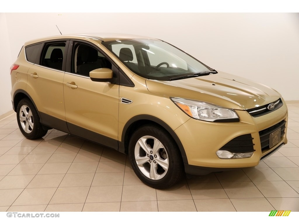 2014 Escape SE 1.6L EcoBoost - Karat Gold / Charcoal Black photo #1
