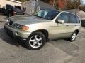 2001 Pearl Beige Metallic BMW X5 3.0i #123666840