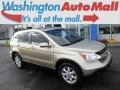 2008 Borrego Beige Metallic Honda CR-V EX-L 4WD  photo #1