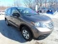 2014 Urban Titanium Metallic Honda CR-V LX AWD  photo #7