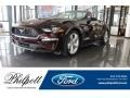 2018 Royal Crimson Ford Mustang EcoBoost Premium Convertible  photo #1