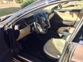 Brown Metallic - Model S  Photo No. 4