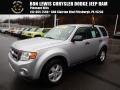 2010 Ingot Silver Metallic Ford Escape XLS #126648640