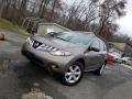 2010 Tinted Bronze Metallic Nissan Murano LE AWD  photo #1