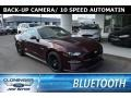 2018 Royal Crimson Ford Mustang GT Fastback #127180704