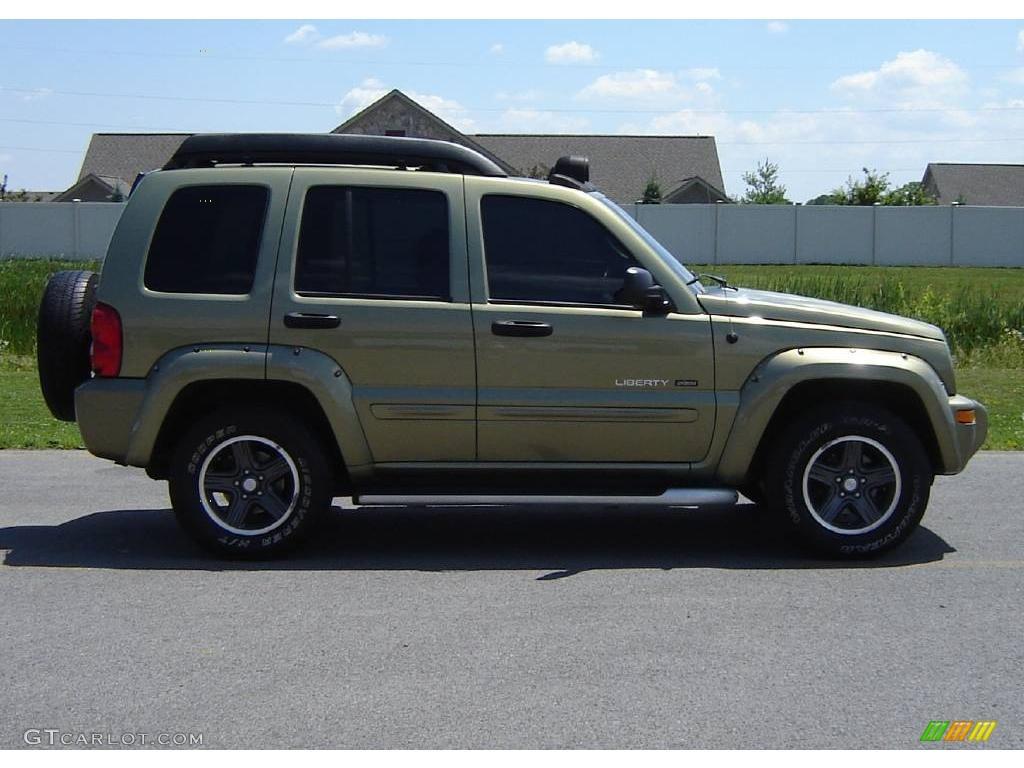 2003 cactus green pearl jeep liberty renegade 4x4 12720015 photo 6 car color. Black Bedroom Furniture Sets. Home Design Ideas
