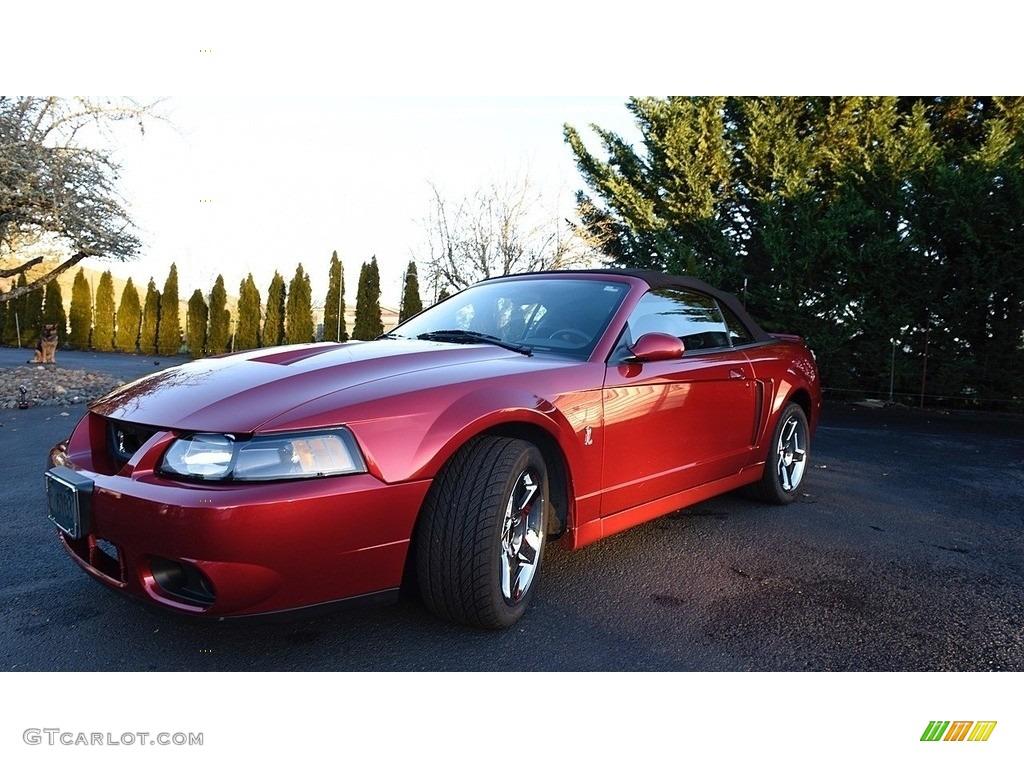 2003 Mustang Cobra Convertible - Redfire Metallic / Dark Charcoal/Medium Graphite photo #8