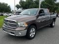 Walnut Brown Metallic 2018 Ram 1500 Big Horn Crew Cab