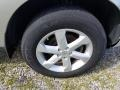 2010 Brilliant Silver Metallic Nissan Murano SL AWD  photo #30