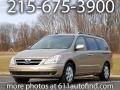Sonora Gold 2007 Hyundai Entourage Limited
