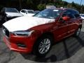 Fusion Red Metallic - XC60 T5 AWD Momentum Photo No. 5