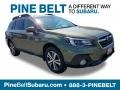 Wilderness Green Metallic 2019 Subaru Outback 3.6R Limited