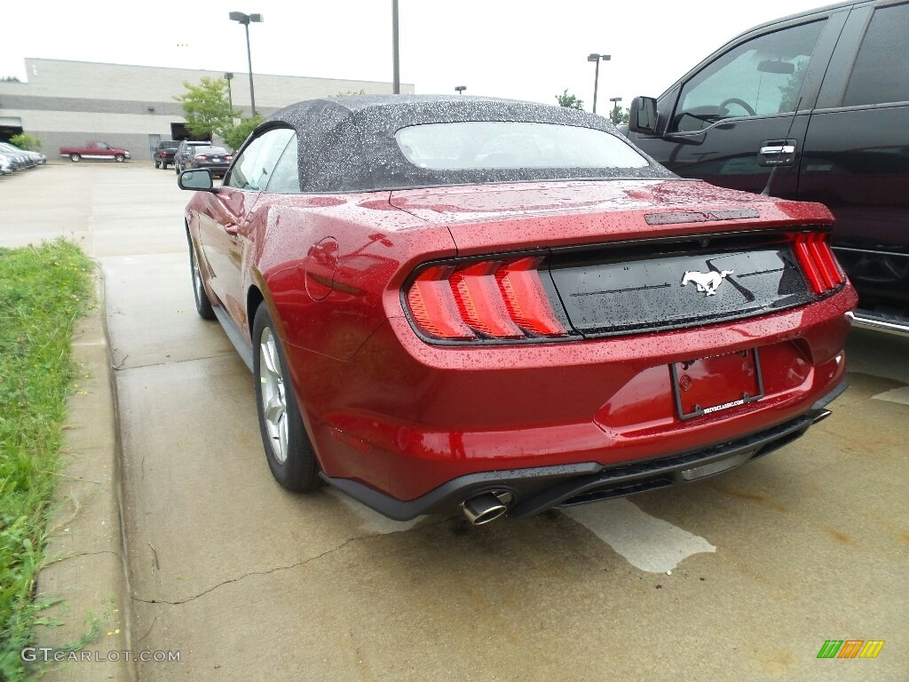2019 Mustang EcoBoost Premium Convertible - Ruby Red / Ebony photo #3