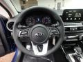 2019 Forte S Steering Wheel