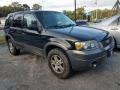 Black 2005 Ford Escape XLT V6 4WD