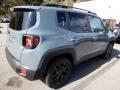 2018 Anvil Jeep Renegade Latitude 4x4  photo #6