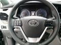 2019 Predawn Gray Mica Toyota Sienna XLE  photo #11