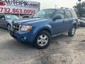 2010 Sport Blue Metallic Ford Escape XLT #130121261