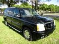 Sable Black - Escalade ESV AWD Photo No. 13