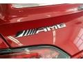 2018 AMG GT R Coupe Logo
