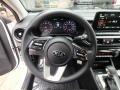2019 Forte LXS Steering Wheel