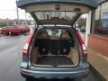 2010 Opal Sage Metallic Honda CR-V LX AWD  photo #27