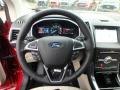 2019 Edge Titanium AWD Steering Wheel