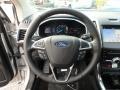 2019 Edge Titanium Steering Wheel