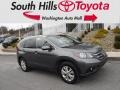 2014 Polished Metal Metallic Honda CR-V EX-L AWD #130889272