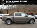 2019 Stone Gray Ford F150 XLT Sport SuperCrew 4x4  photo #1