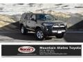 Magnetic Gray Metallic 2019 Toyota 4Runner SR5 4x4