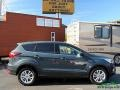 2019 Baltic Sea Green Ford Escape SE 4WD  photo #7