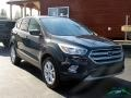 2019 Baltic Sea Green Ford Escape SE 4WD  photo #8