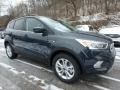 2019 Baltic Sea Green Ford Escape SEL 4WD  photo #9