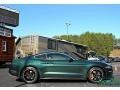 2019 Dark Highland Green Ford Mustang Bullitt  photo #7