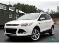 2014 White Platinum Ford Escape Titanium 2.0L EcoBoost #132188352