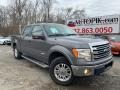 Sterling Gray Metallic 2013 Ford F150 Lariat SuperCrew 4x4