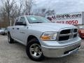 2011 Bright Silver Metallic Dodge Ram 1500 ST Quad Cab #132607948