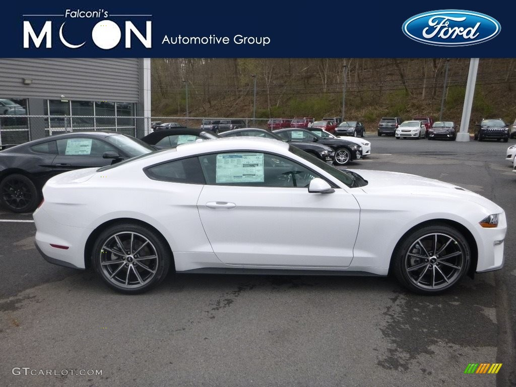 2019 Mustang EcoBoost Fastback - Oxford White / Ebony photo #1