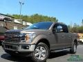 2019 Stone Gray Ford F150 Lariat Sport SuperCrew 4x4 #132902428