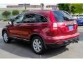 2009 Tango Red Pearl Honda CR-V EX-L  photo #5